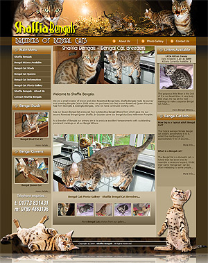 Shaffia Bengals - Bengal Cat Breeders